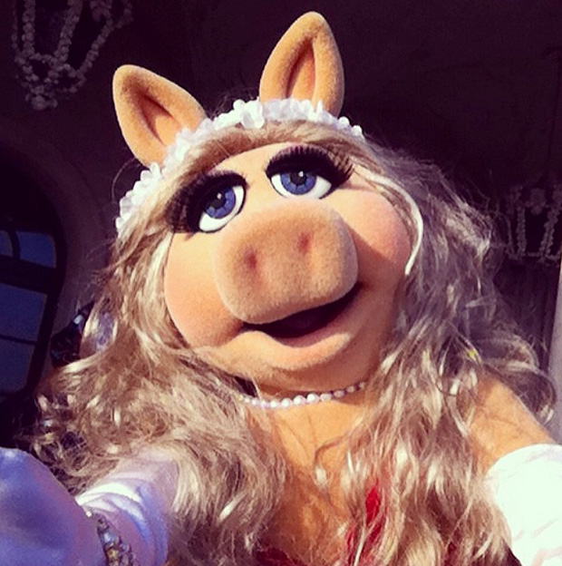 📷 via http://instagram.com/themuppets