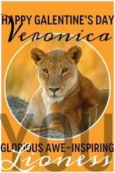 VERONICA, you glorious awe-inspiring lioness